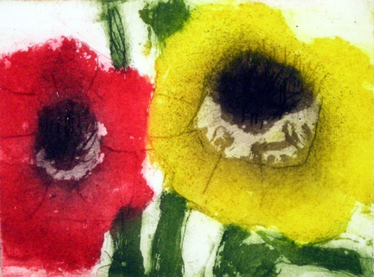 Rudbeckia rot gelb