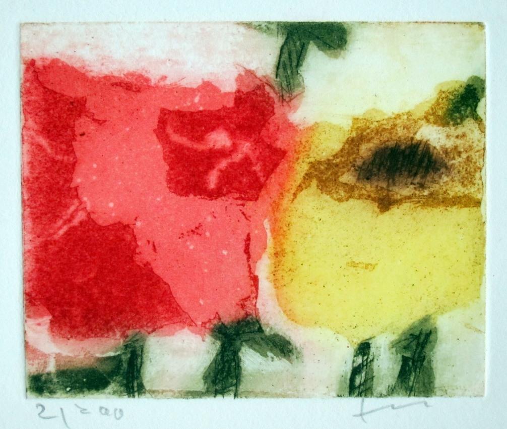 Rosen rot/gelb