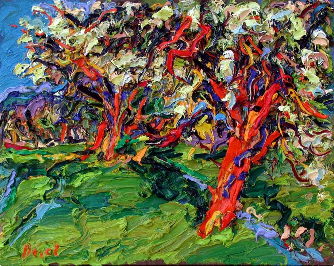Blühende Birnbäume
