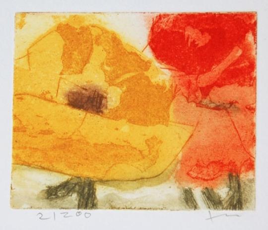 Rosen gelb/rot