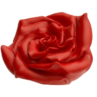 Rose - rot, signiert