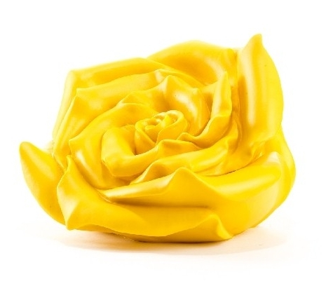 Rose - gelb, signiert
