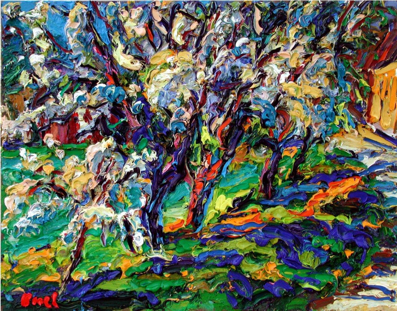 Kirschbäume in Pechau