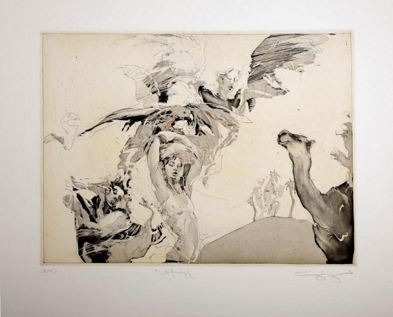Wüstenvögel