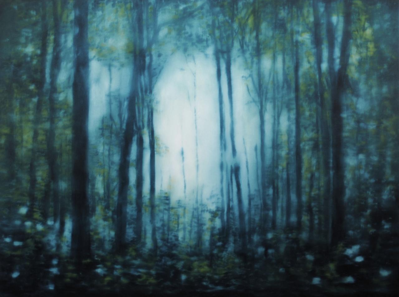 Wald (914) 2013