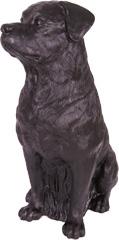 Rottweiler - schwarz
