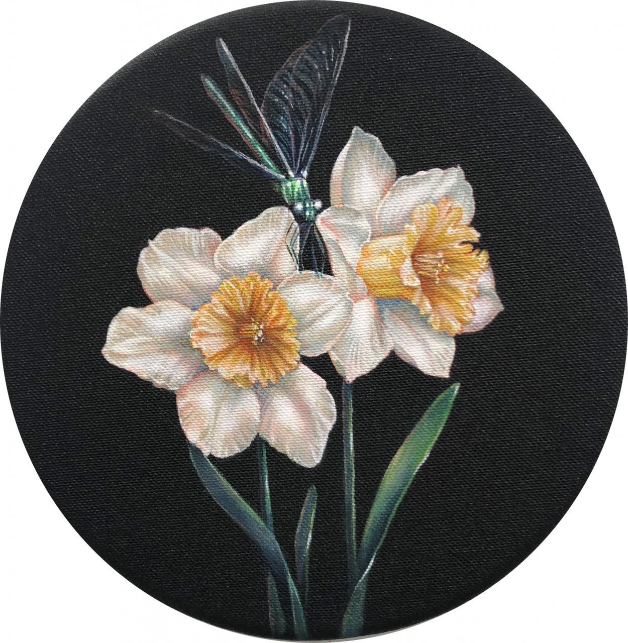 Narciso II