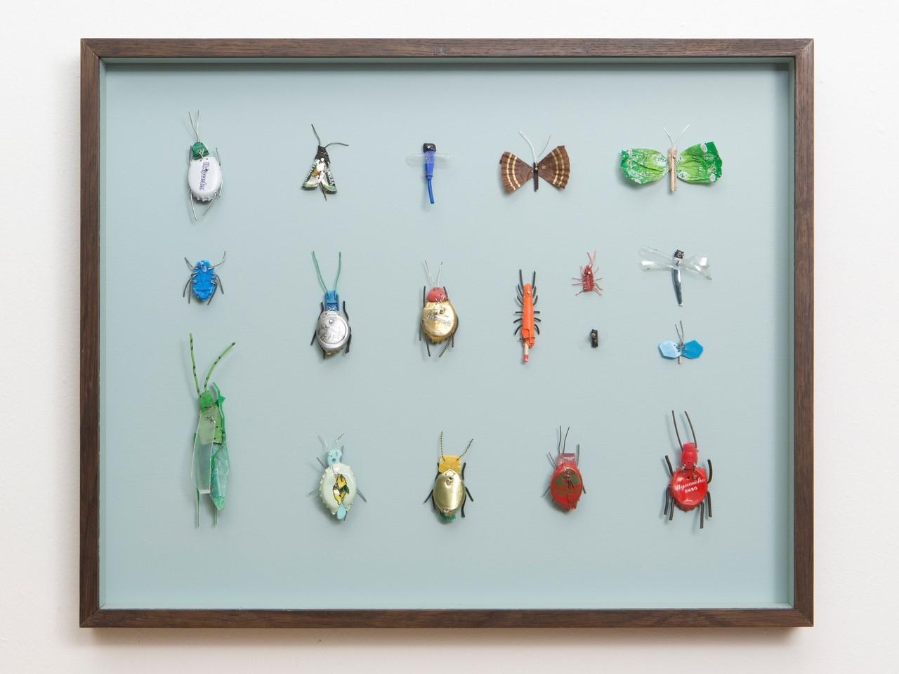 Insektenkasten (Januar IV)