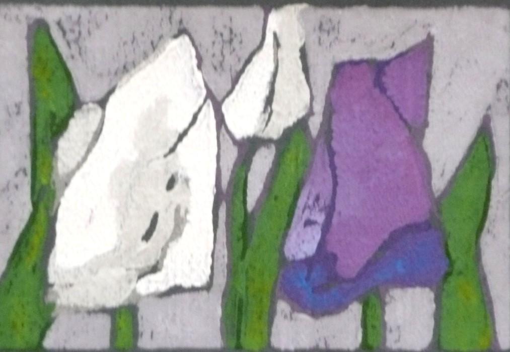 Tulpen weiß/rosa/violett