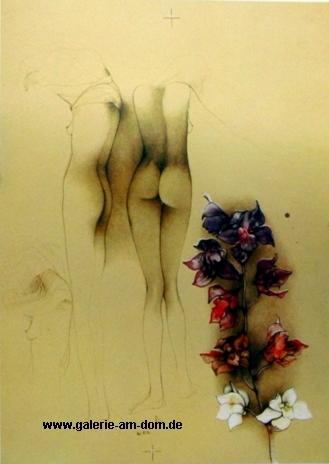 Orchideen für John