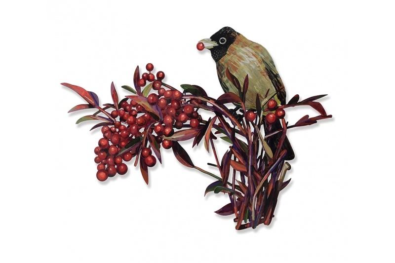 Boul Boul (Valdman Bird)