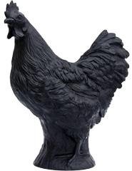 Huhn - schwarz, signiert