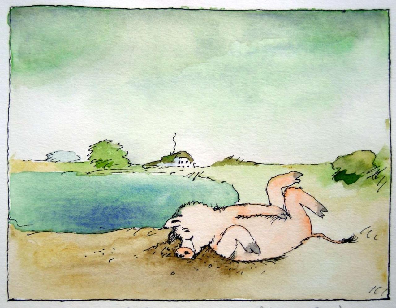 Das arme Schwein liegt hier allein...