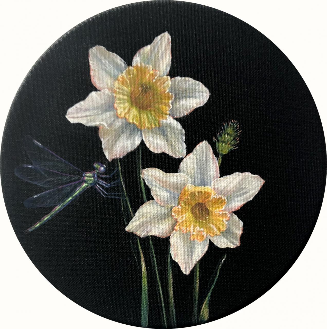 Narciso III