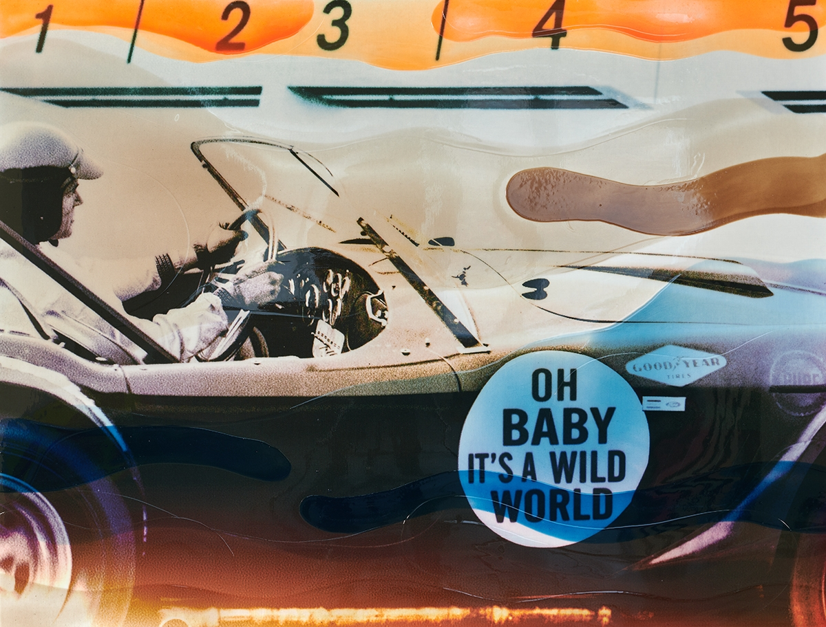 It's a Wild World - Epoxy - 2019