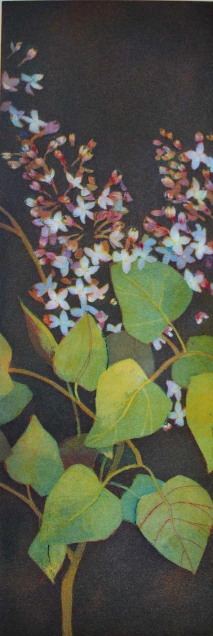 Blütengewisper