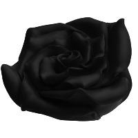 Rose - schwarz, signiert