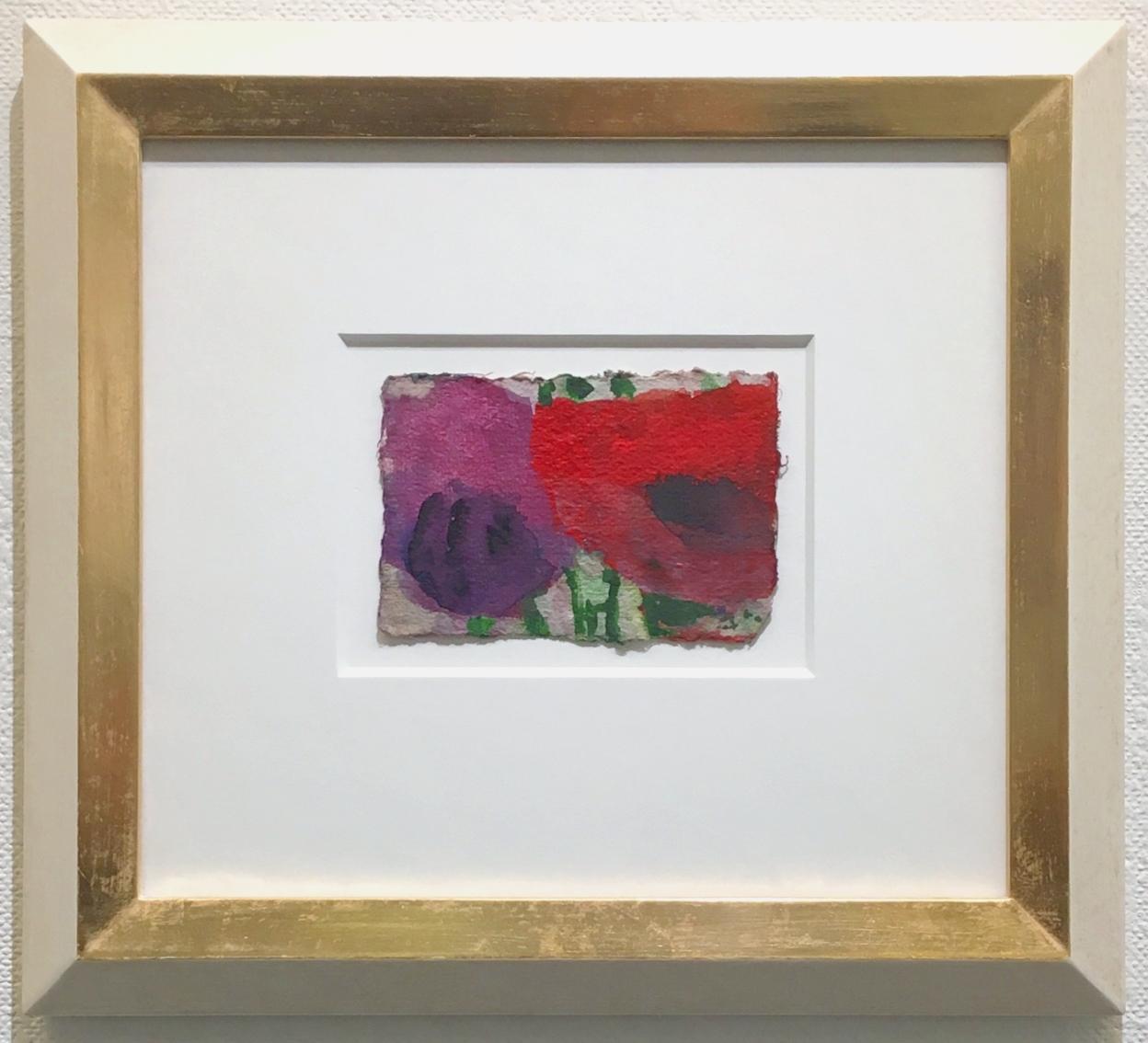 Mohn rot-violett 2017