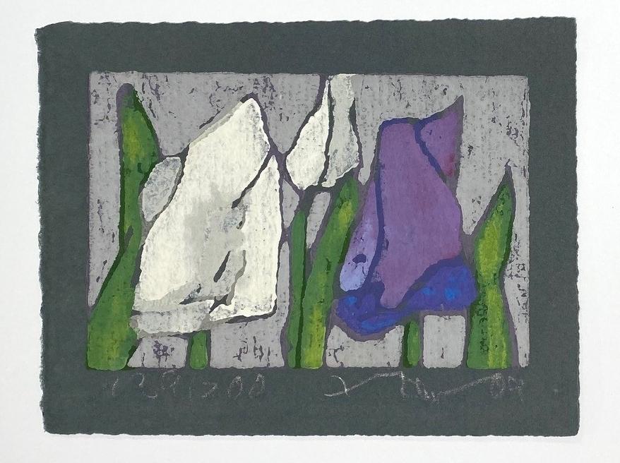 Tulpen weiß/lila