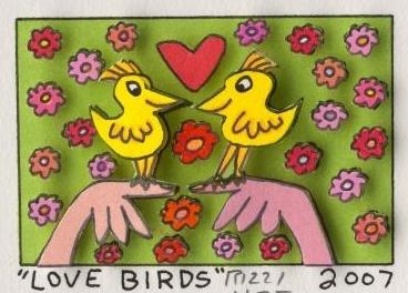Love Birds 2007