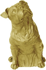 Mops - gold