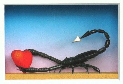 Sternzeichen: Skorpion